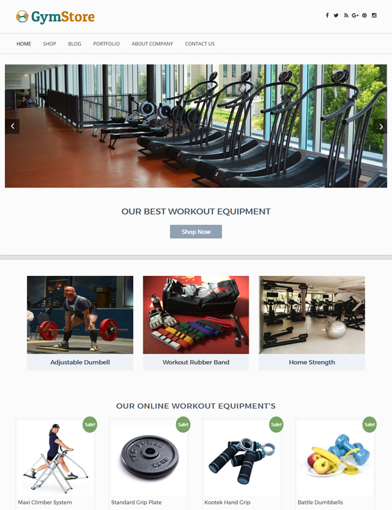 gym fitness wordpress themes store