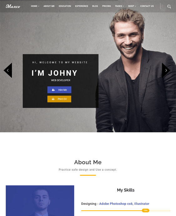 cv resume wordpress themes