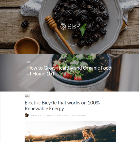 blackberry food recipe wordpress themes