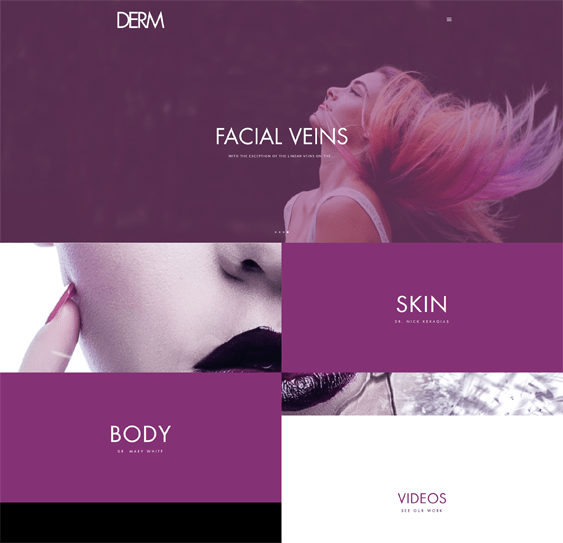 derm medical wordpress themes