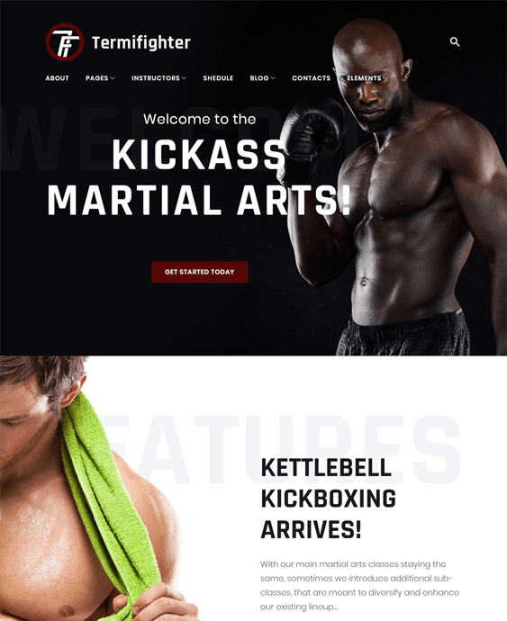 termifighter sports wordpress themes