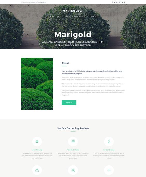 gardening--landscape-design-wordpress-theme_63489-original