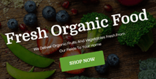 best wordpress themes green organic eco friendly feature