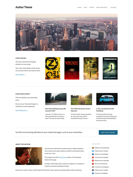 wordpress themes selling promoting books