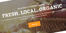 best wordpress themes green organic ecofriendly websites feature