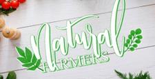 best wordpress themes green organic eco-friendly feature