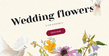 best wedding bridal opencart themes feature