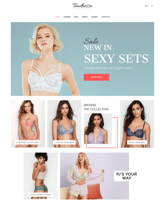 woocommerce themes for lingerie stores