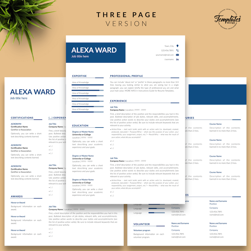 professional cv template in three pages