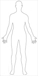 human body outline outlines