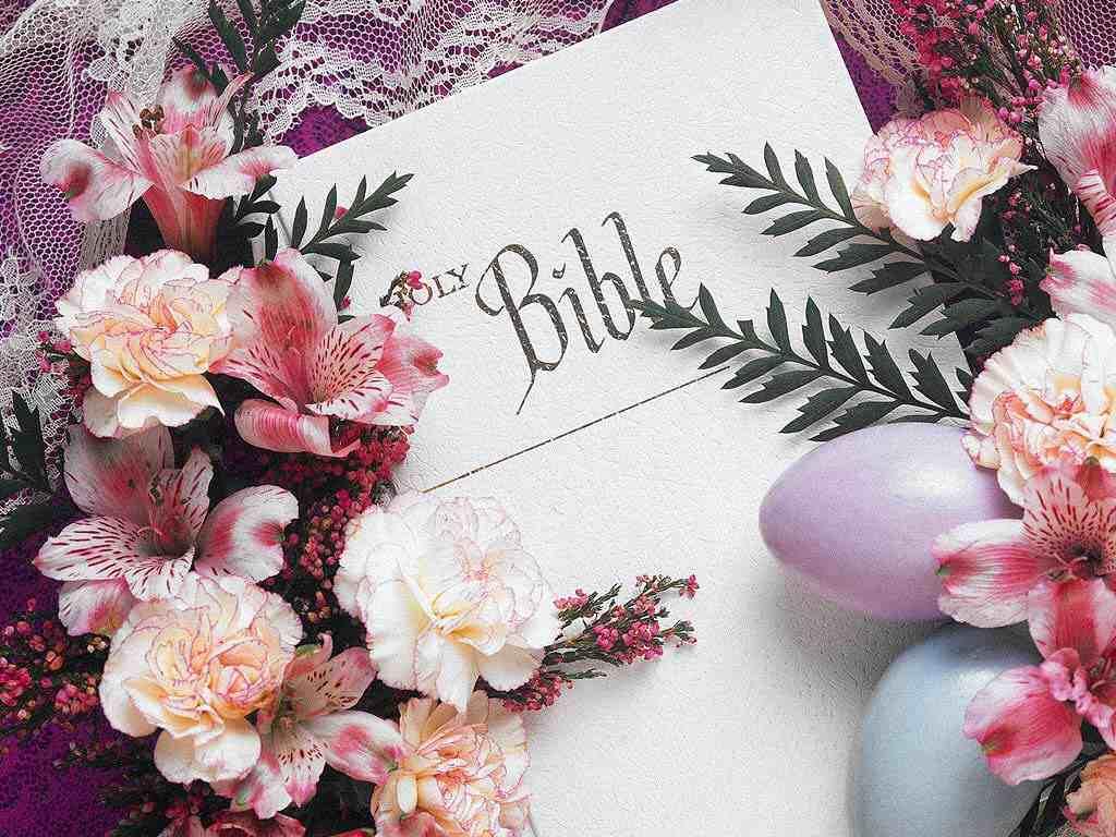 https://i0.wp.com/templeofprayers.org/bibleflowerswallpaper.jpg