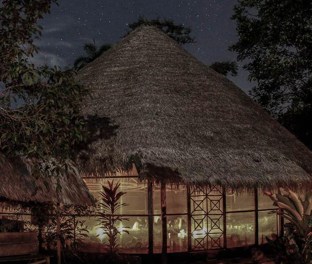 Ayahuasca Ceremony Maloka