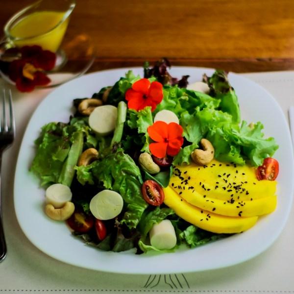 "Salada Sabor Do Ser (Vegana) <img class=""alignend wp-image-10087"" src=""https://templodoser.org/wp-content/uploads/2020/09/vegan30x32.png"" alt=""vegan"" width=""24"" height=""26"" />"