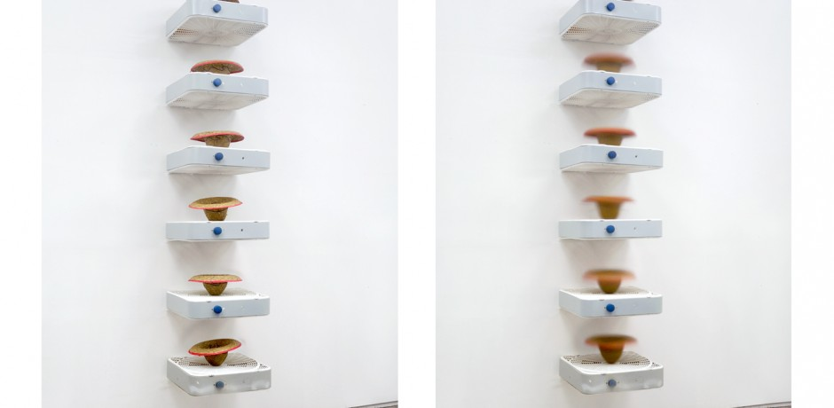 """Hamilton Poe, """"Stack,"""" box fans, sombreros, and hardboiled eggs. On view at """"State of the Art."""""""