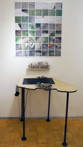 The Atlas of Endangered Surfaces (installation view) at Radiator Gallery, December 2015