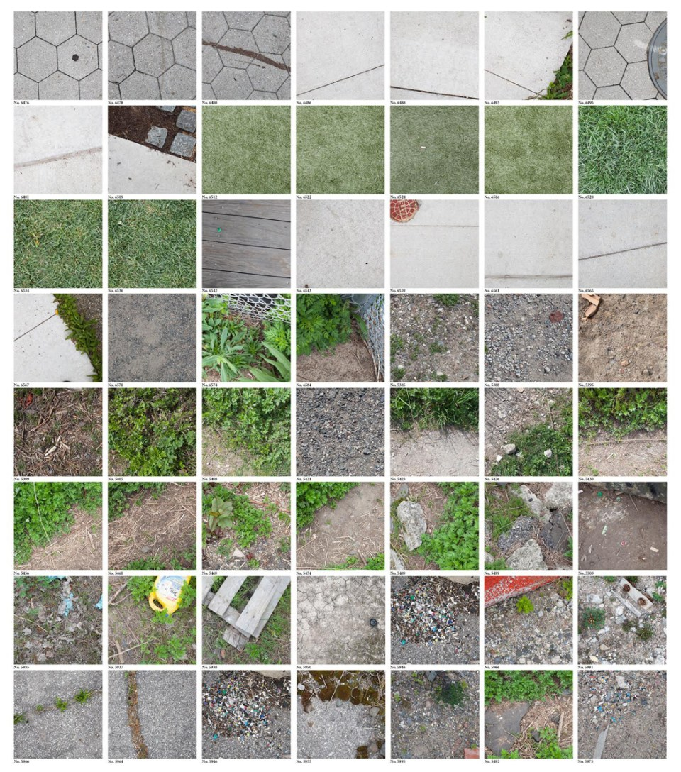 Endangered Surfaces Photo Grid