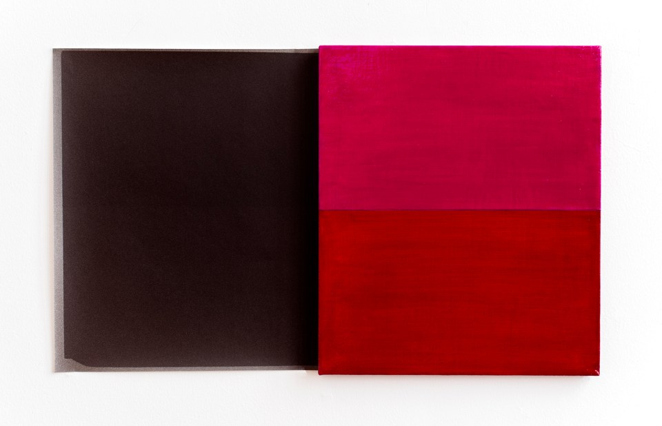 Red / Fuchsia, from Blue Shift, 2015. Oil on linen painting and fiber-based silver gelatin print, 14 x 24 in.
