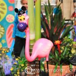 Wordless Wednesday ~ Spring at WDW!