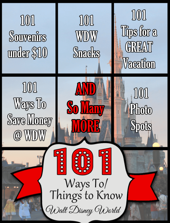 101 Ways To/Thing to Know Walt Disney World Series