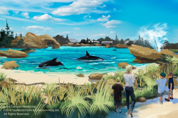 SeaWorld Entertainment, Inc. announced plans to build new, first-of-its kind killer whale environments at all three SeaWorld parks, starting with SeaWorld San Diego.