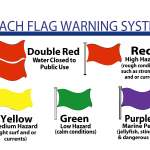 What Do Beach Flags Mean?