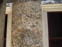 lamu coral house