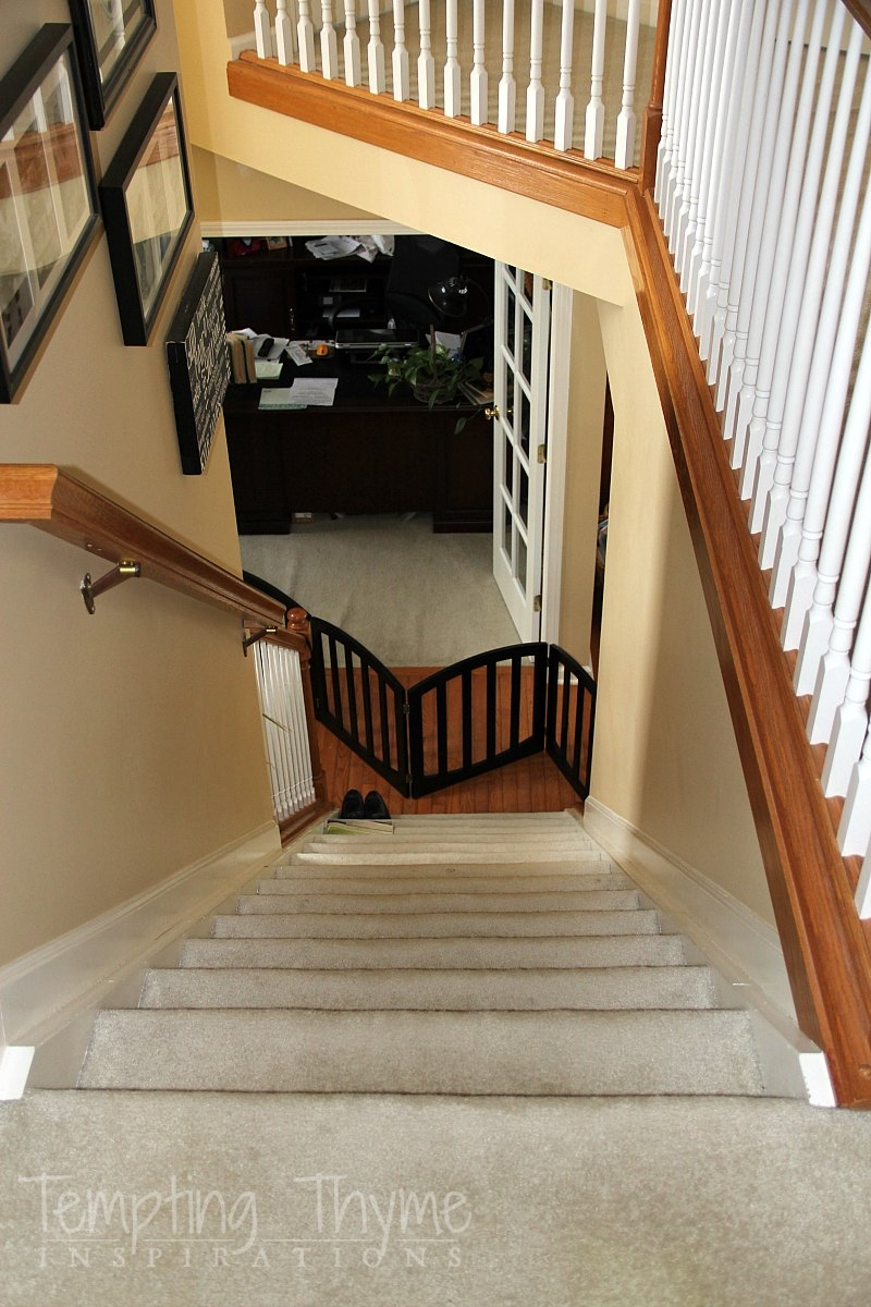 Stair Project Begins Removing The Carpet And Prepping The Wood   Cost To Have Stairs Carpeted   Stair Case   Hardwood   Stair Tread   Installation   Carpet Runner