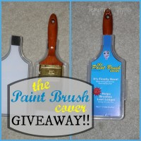 The Paint Brush Cover Giveaway!!