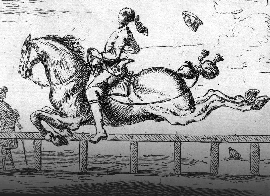 Horse leaps into the air to demonstrate Airs Above the Ground