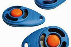 dog training tool clicker