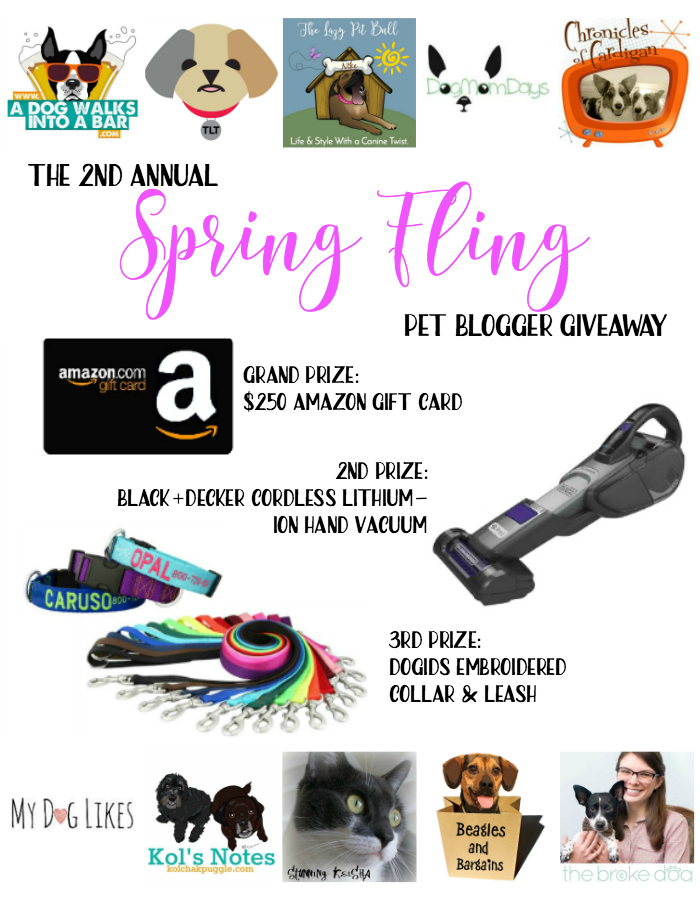 Spring Fling Pet Blogger Giveaway 2017