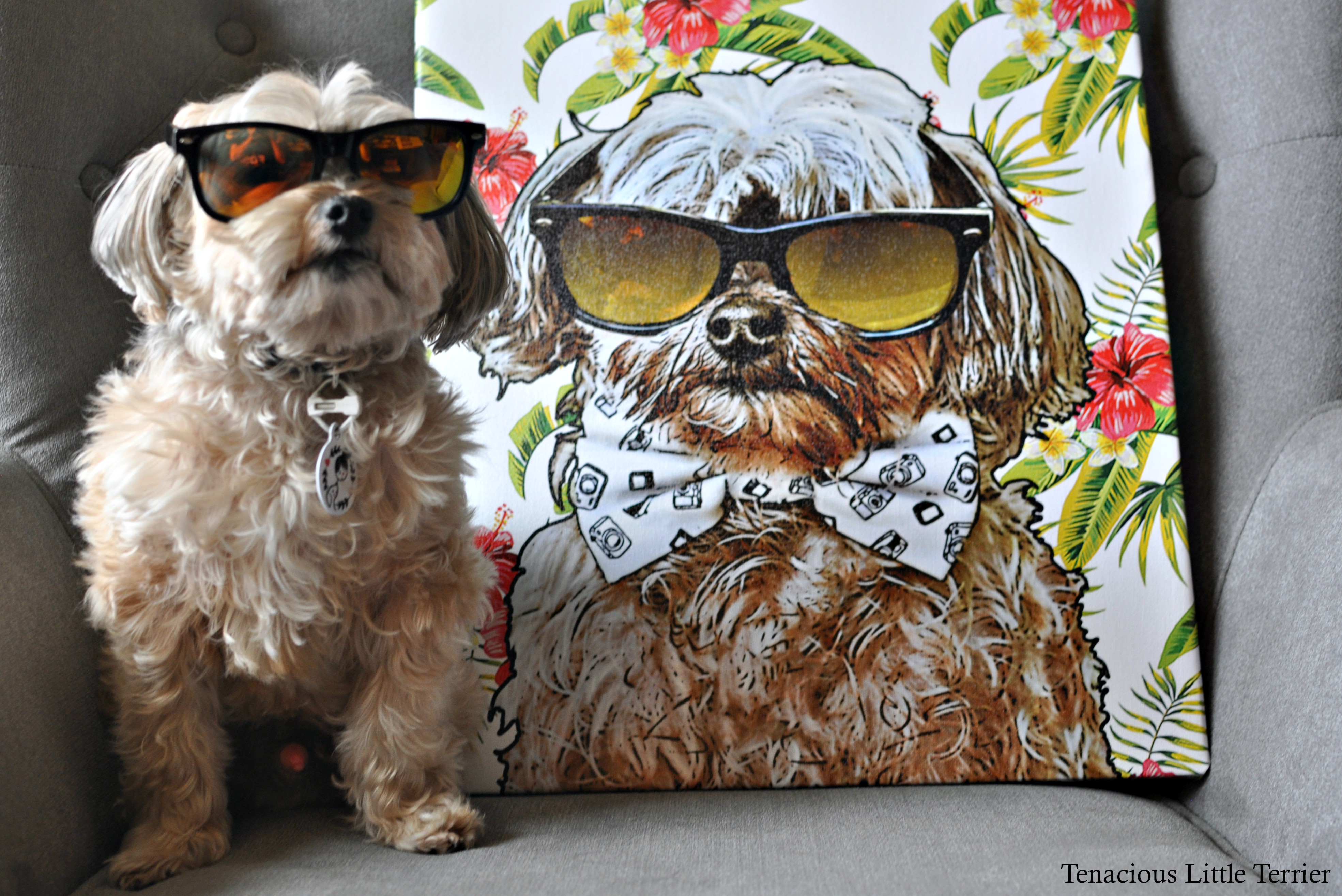 51482197068a Pop Your Pup: Custom Dog Pop Art for Your Walls and Clothes - Tenacious  Little Terrier