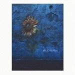 【上昇中!】Mr.Children himawari (初回生産限定盤)(CD+DVD)