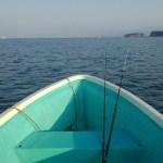 ボートシロギス調査