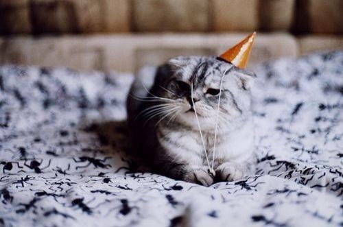 Absente, raison : anniversaire : cadeaux