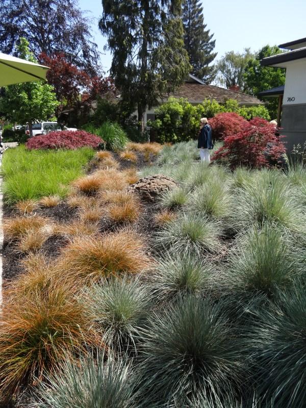 garden ideas combine ornamental