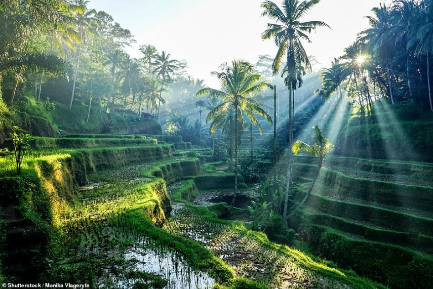 Head to Bali to relax at the four-star Alila Ubud spa hotel deep in the jungle of the interior for three nights before enjoying the watersports and beach at the five-star Nusa Dua Beach Hotel & Spa