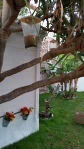 trampa para moscas las palmas, tenerife