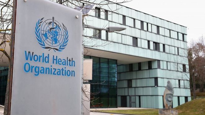 World Health Organization: What is the WHO and what does it do?