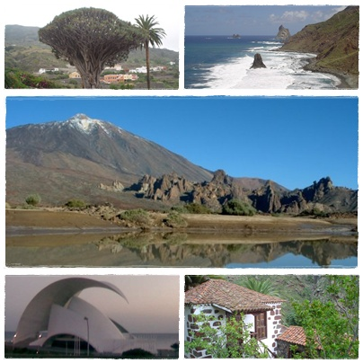 Alcune immagini di Tenerife