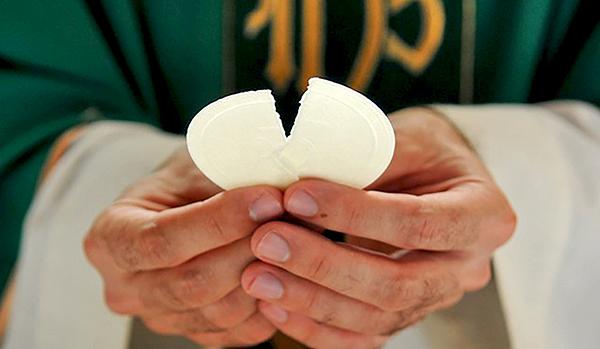 Celebremos la Misa: la fracción del Pan y el Cordero de Dios