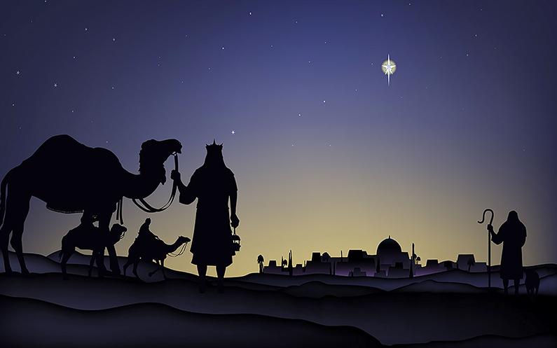 13 de diciembre: pon ternura en tu vida