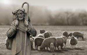 IV Domingo de Pascua: el Buen Pastor y la puerta de las ovejas