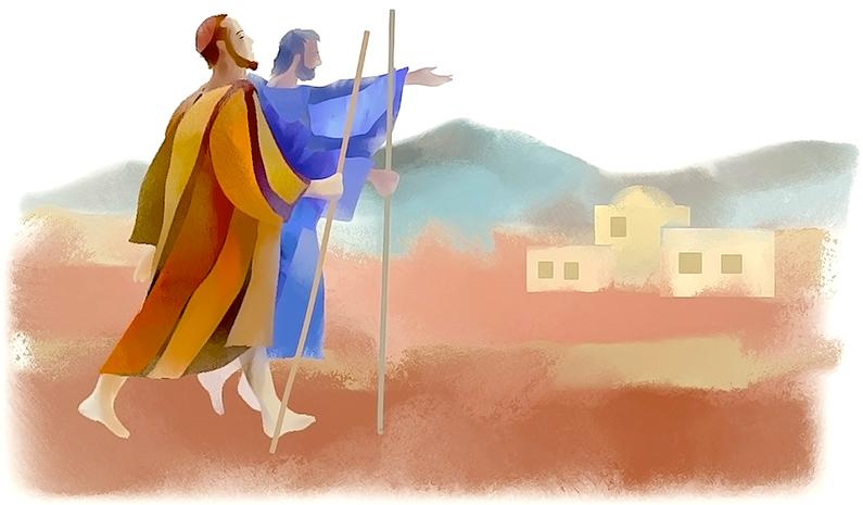 XV Domingo durante el año: el envío a predicar