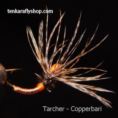Copperbari600