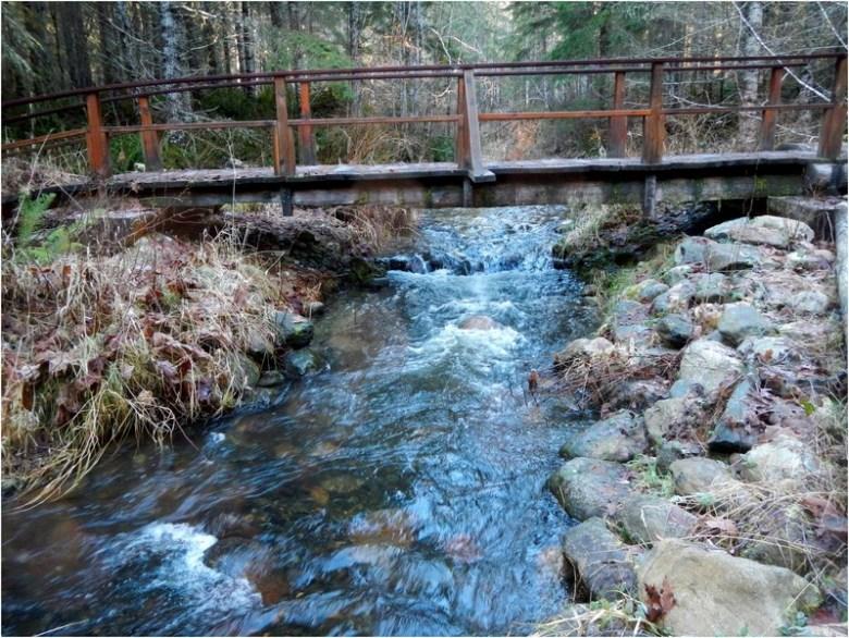 Foot Bridge Over Lower Boulder Creek
