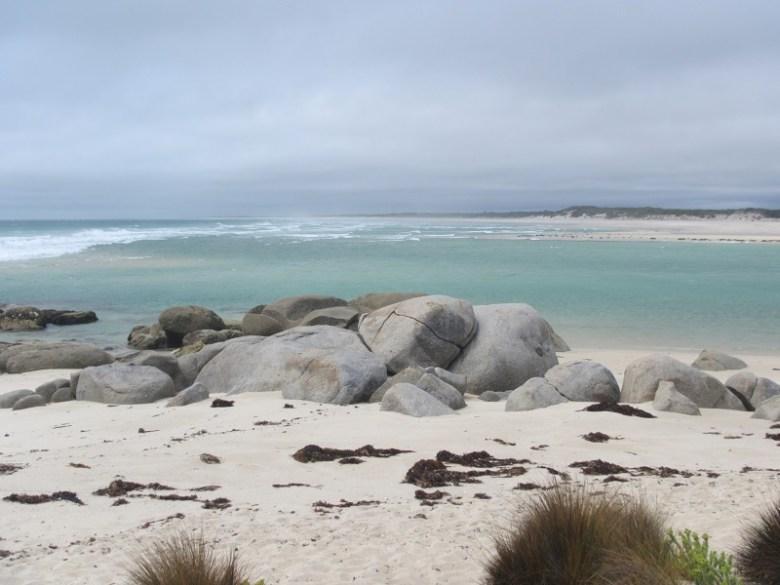 Dean Price SU20 - Tasmania's Flinders Island Tenkara - 2