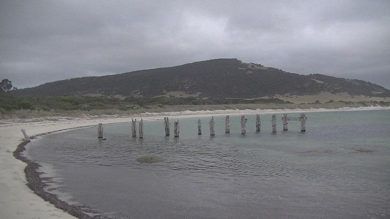 Dean Price SU20 - Tasmania's Flinders Island - 1