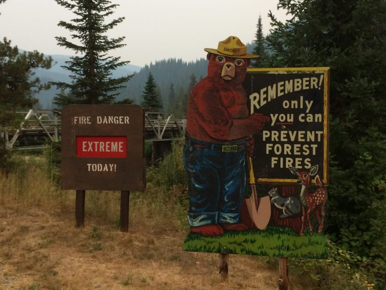 Diane Kelly-Riley - Fire Season Idaho - Smokey Bear