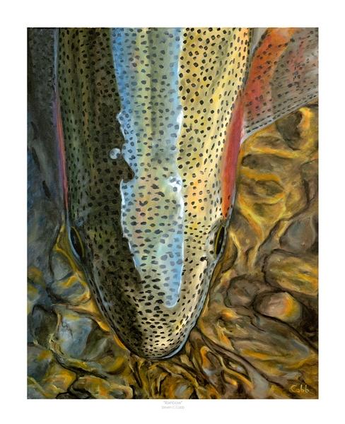 Tenkara Angler Gift Guide - Steve Cobb Rainbow
